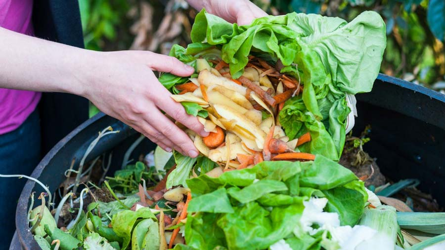 Food Waste Management in London, Ontario